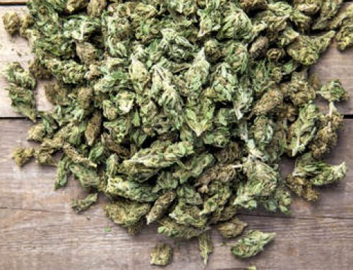Cannabis Grow Facility (9,900 sq ft)