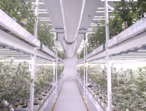 Oakland Ca – Additional Cultivation Facility