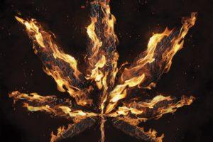 leaf-shaped fire